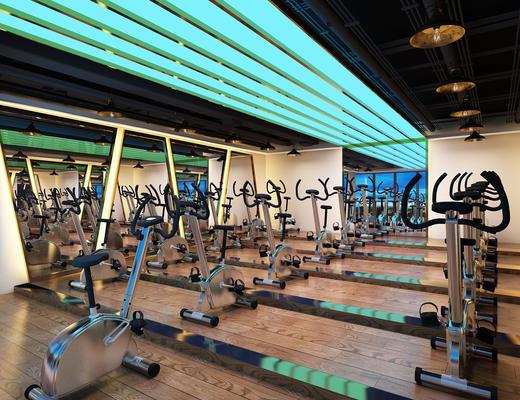健身器材, 现代, 运动器材, 健身房