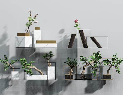 植物组合, 花瓶, 盆栽, 植物