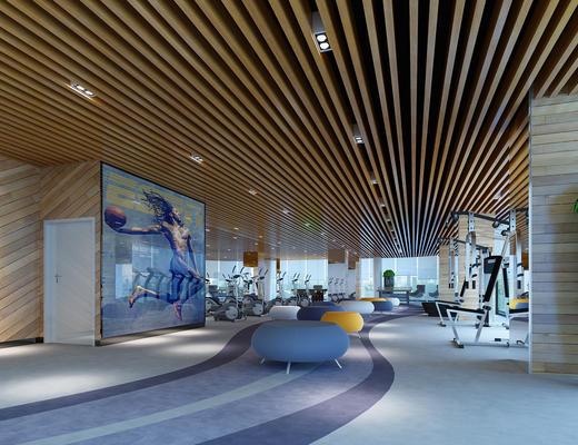 现代, 健身室, 运动器材