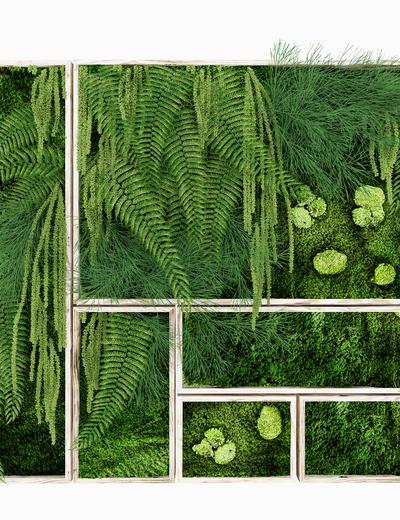 植物墙, 绿植, 绿植墙, 装饰墙