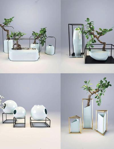 盆栽组合, 花卉, 盆栽, 植物, 新中式